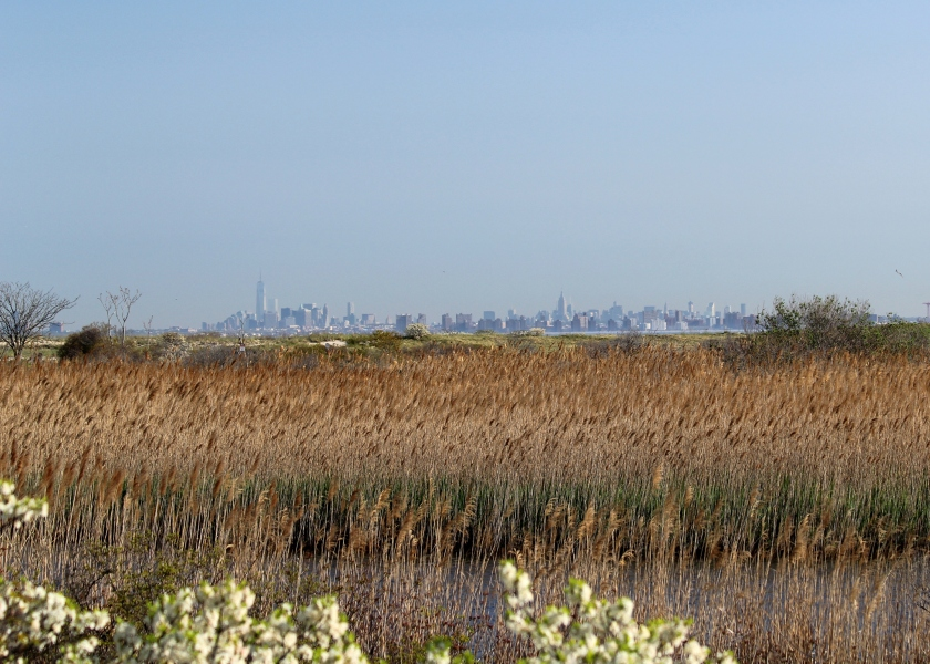 View from Sandy Hook, North Beach to Manhattan