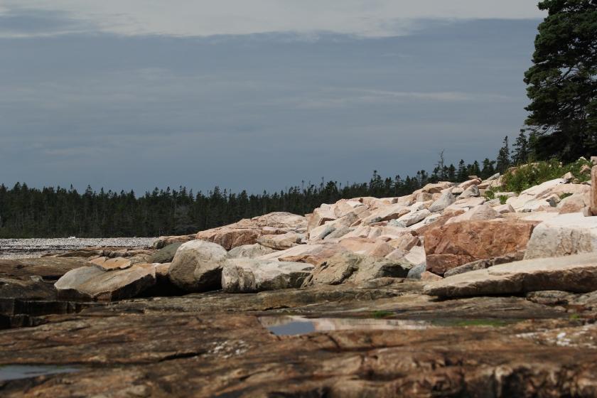 A rocky shoreline typical of Mt. Desert Island