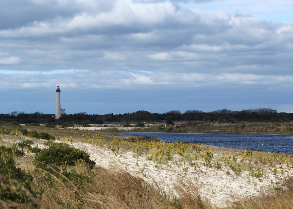 View of a freshwater lake and lighthouse at Cape May Point.