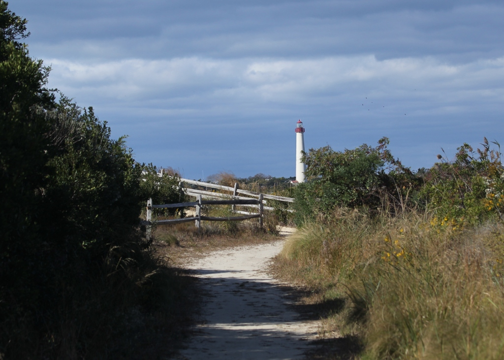 Trail at Cape May Meadows