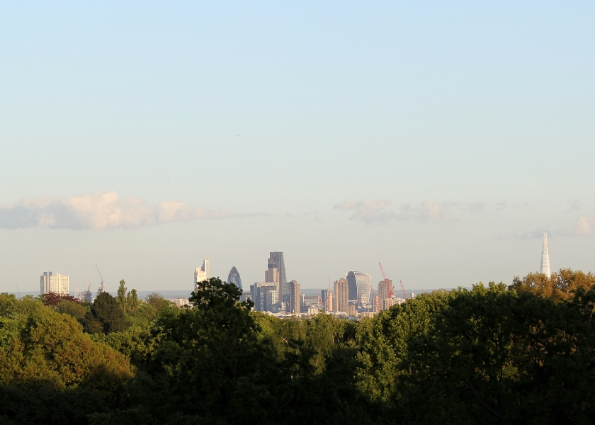Central London from Hampstead Heath